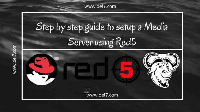Step by step guide to setup a Media Server using Red5