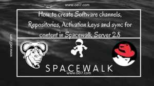 How to create Software channels, Repositories, Activation keys and sync in Spacewalk Server 2.8 24