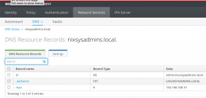 Creating DNS zones and DNS records in IPA Server