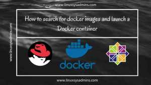 How to search for docker images and launch a container