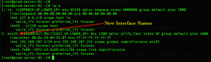 rhel 7 interface name before changed