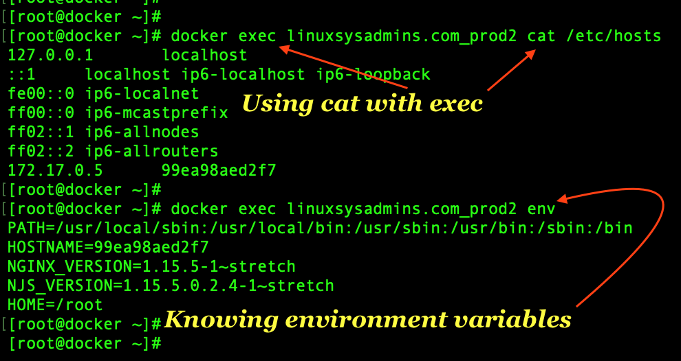 Executing command in docker containers