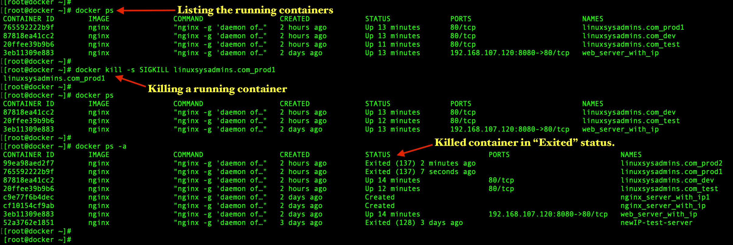 Killing Docker container
