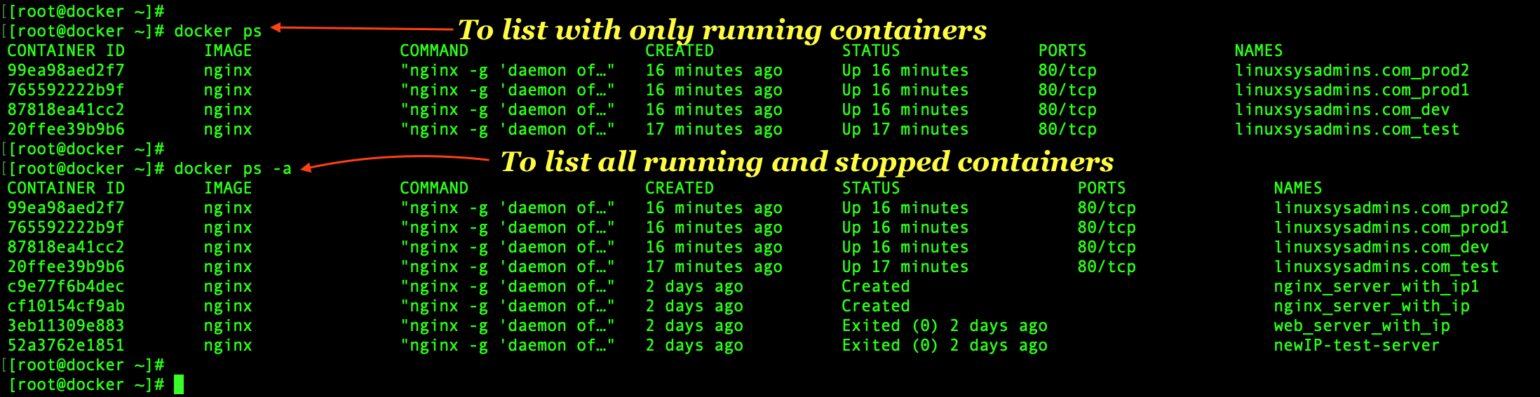 Listing running and stopped docker containers