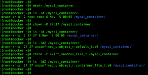 Manage data in Docker container