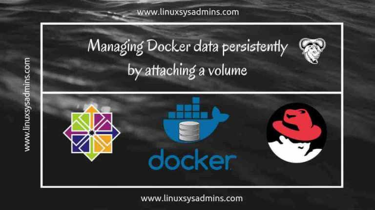 Managing Docker data persistently by attaching a volume