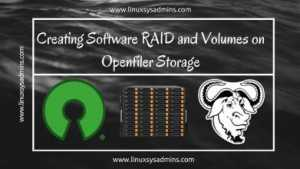 RAID and Volumes on Open-filer Storage