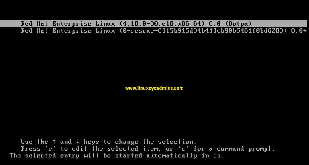 Installing RedHat Enterprise Linux 8.0 with screenshots 1