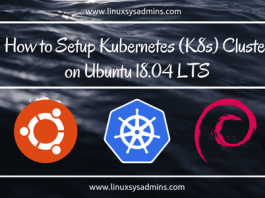 How to Setup Kubernetes (K8s) Cluster on Ubuntu 18.04 LTS