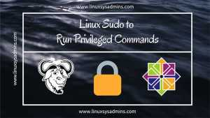 Linux Sudo to run Privileged Commands